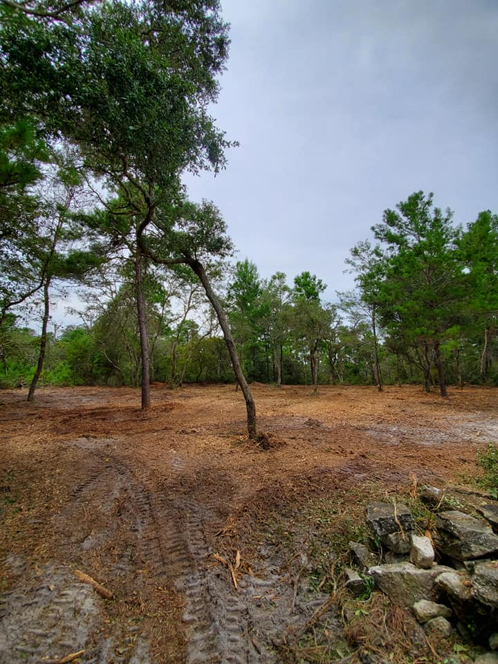 Cleared land by Devine Land Management Land Clearing and Forestry Mulching