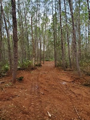 Cleared land for ATV trails by Devine Land Management Land Clearing and Forestry Mulching